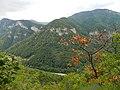 Mehadia, Romania - panoramio (2).jpg
