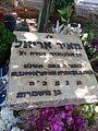 Meir Ariel gravestone.jpg