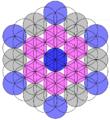 Metatrons cube in 61-circles.png