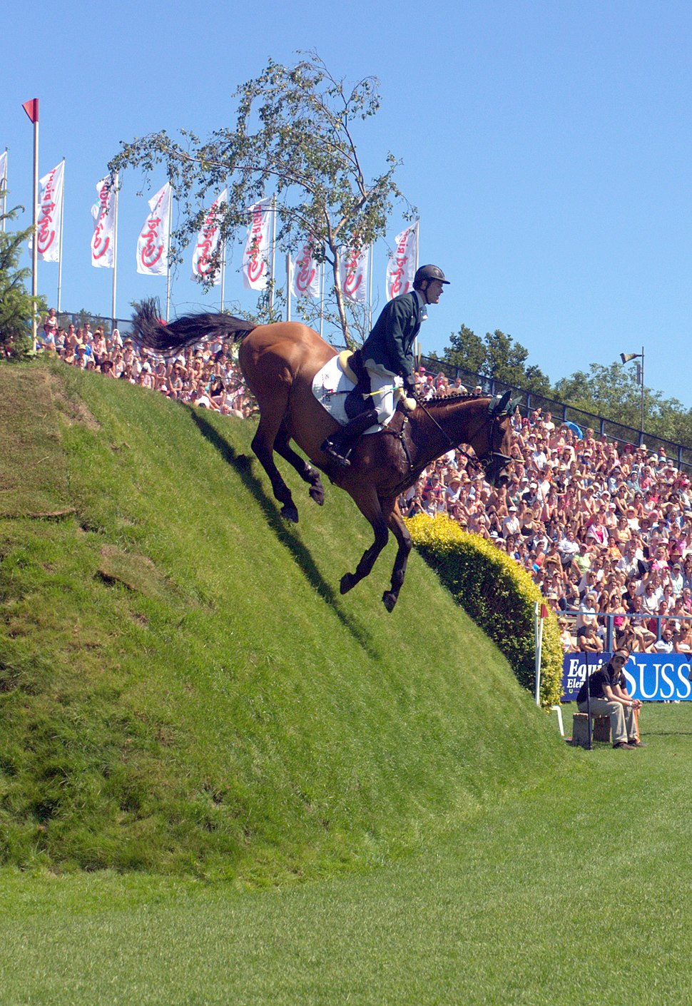 Michael Whyte on Hickstead Derby Bank