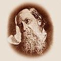 Mikhail Saltykov-Shchedrin, 1880.jpg