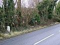 Milestone near Spetisbury - geograph.org.uk - 1657876.jpg