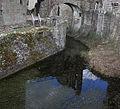 Moat, Raglan Castle - geograph.org.uk - 1759444.jpg