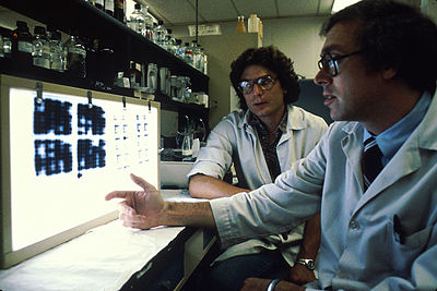 Researchers looking at slides of cultures of cells that make monoclonal antibodies. These are grown in a lab and the researchers are analyzing the products to select the most promising of them. Monoclonal antibodies3.jpg