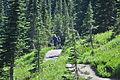 Mount Rainier - Paradise - Moraine Trail - August 2014 - 04.jpg