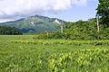 Mt.Shibutsu 19.jpg