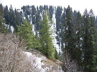 Gul-e-Rana - shooting place for serial.