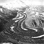 Muldrow Glacier, valley glacier with winding wide moraines, 1957 (GLACIERS 5177).jpg