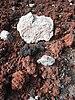 Multi-coloured scoria in the Tarawera rift.jpg