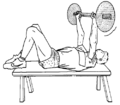 Musculation exercice triceps brachial 2.png