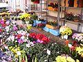 Mussidan, fleurs au marché.jpg