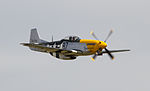 Mustang P-51 Furious Frankie (5927440328).jpg