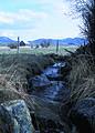 NRCSMT01067 - Montana (4981)(NRCS Photo Gallery).jpg