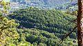 NSG 158 Greifenstein (Gebiet an der Burg Greifenstein) Landkreis Saalfeld-Rudolstadt DE -TH 1.jpg