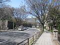 Nagoya Castle (6).JPG