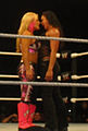 Natalya and Tamina.jpg