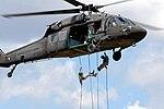 National Guard (37175020074).jpg