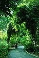 Nature At Finest (169879201).jpeg