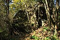 Nature reserve Dobrockovske hadce in autumn 2011 (40).JPG