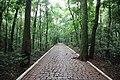 Natureza esculpindo os caminhos.jpg