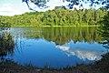 Naturschutzgebiet Krumme Laake Berlin 2.jpg