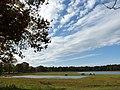 Natuurgebied Ganzenven - panoramio (5).jpg