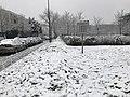 Neige Boulevard Copernic Champs Marne 2.jpg