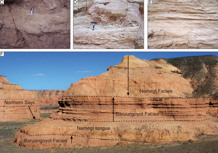 Photos of the interfingering contacts between the formations Nemegt and Baruungoyot Formations.png