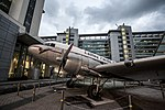 Niki of Cathay Pacific.jpg