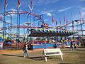 North Florida Fair 2013 50.JPG