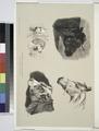 Nouvelles études d'animaux aux deux crayons, no. 2- (Têtes de taureau, de cheval, de chiens, de boeuf) (NYPL b16513363-1150575).tiff