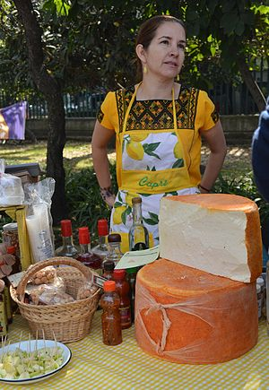 Cheeses of Mexico - Vendor selling artisanal cheese made from sheep's milk.