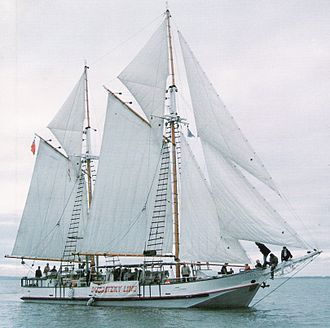 Scow - Jane Gifford Re-rigged, Manukau Harbour 1993. Photo: Subritzky Collection.
