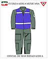Oficial de seguridad aerea Fuerza aérea mexicana.jpg