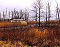Ohio Valley Mushroom Farm, Acid-Mine Drainage (AMD) (13671194024).jpg