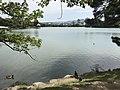 Ohori Park near Kangetsubashi Bridge 2.jpg