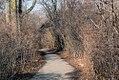 Ojibway - xmas 2011 (6577865147).jpg