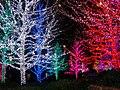 Oklahoma City Christmas Light - panoramio.jpg