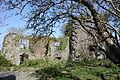 Old Court Devenish House, Athlone, March 2012 (02).JPG