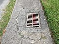Old Jefferson Louisiana Residential Drainage Grate.jpg