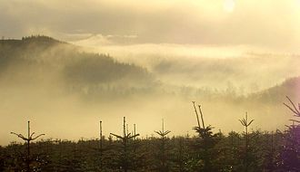 Climate of Ireland - Fog in the Wicklow Mountains