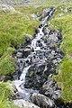 Outflow from Llynnau'r Cwn - geograph.org.uk - 1438360.jpg