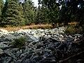 P1011012 Каменная река с горы Большой Иремель.JPG