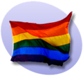P rainbow flag.png
