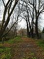 Park Nadolnik, Poznań 02.jpg