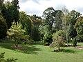 Parkland in Eastwoodhill Arboretum.jpg