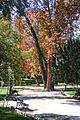 Parque Forestal of Santiago (16984760592).jpg