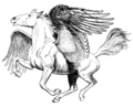 Pegasus (PSF).png