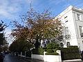 Pelham Place, Kensington 08.jpg