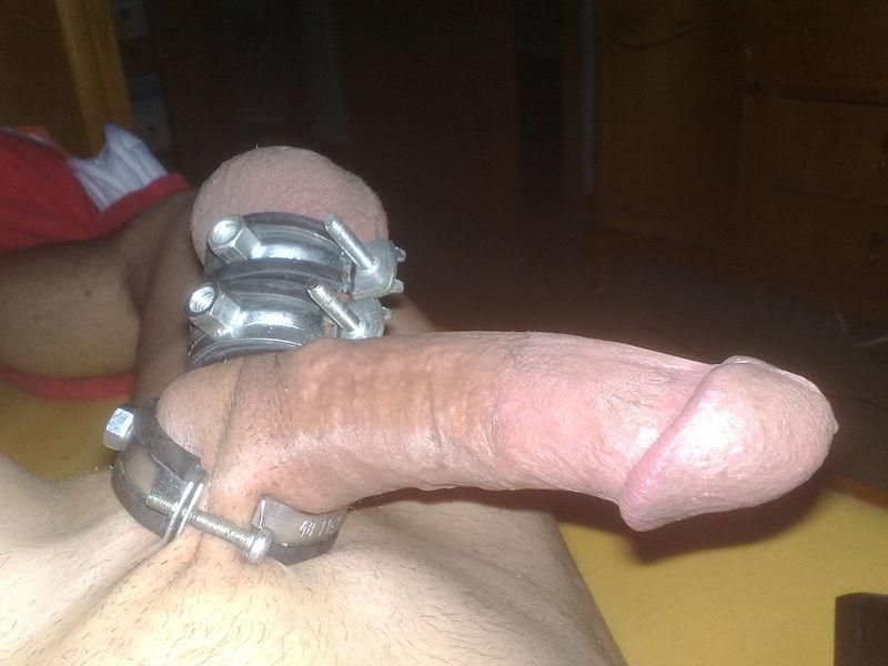 File:Penis mit Verbindungsringe abgebunden.jpg